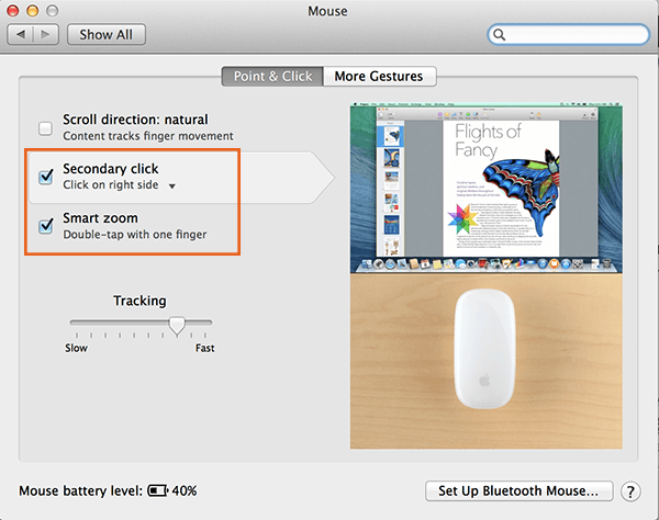 Magic Mouse-2