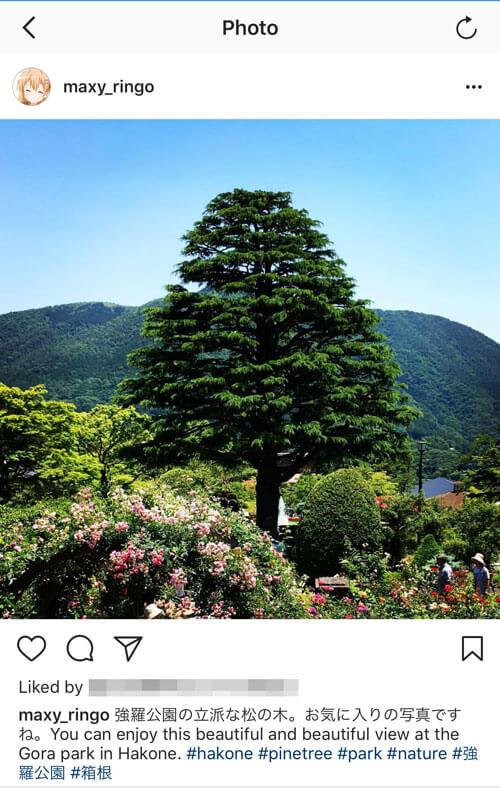 Instagramの投稿は日本語と英語の両方で投稿しよう 2